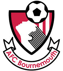 Beesotted's pre-match guide: AFC Bournemouth