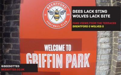 Bees Lack Sting, Wolves Lack Bite – Brentford 0 Wolves 0 (VIDEO)