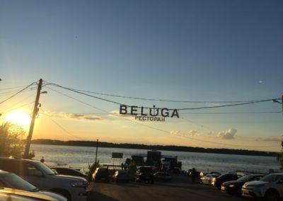 Our bar - Beluga, Samara