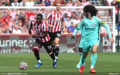 Bees Rue Missed Chances Against Brighton – Beesotted Weekend Review